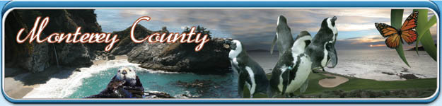 Monterey Bay Travel Vacations