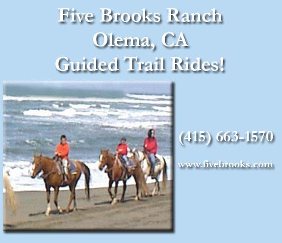 Hotels Near Olema California